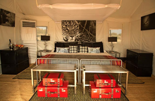 Bera Rajasthan u2013 Jawai Leopard C& & Luxury Tents India - Camping Maharaja Style