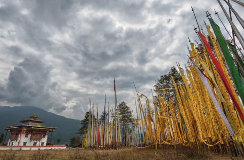 Bhutan Highlights & Festival Group