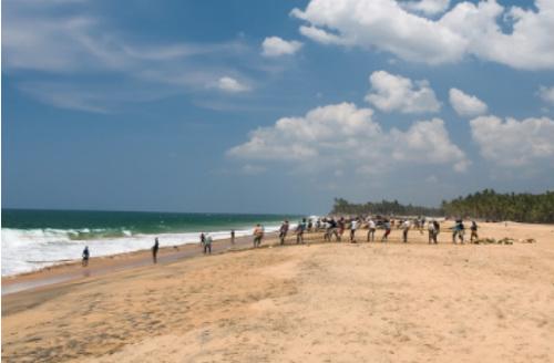 Kerala Highlights, Cuisine & Yoga Group